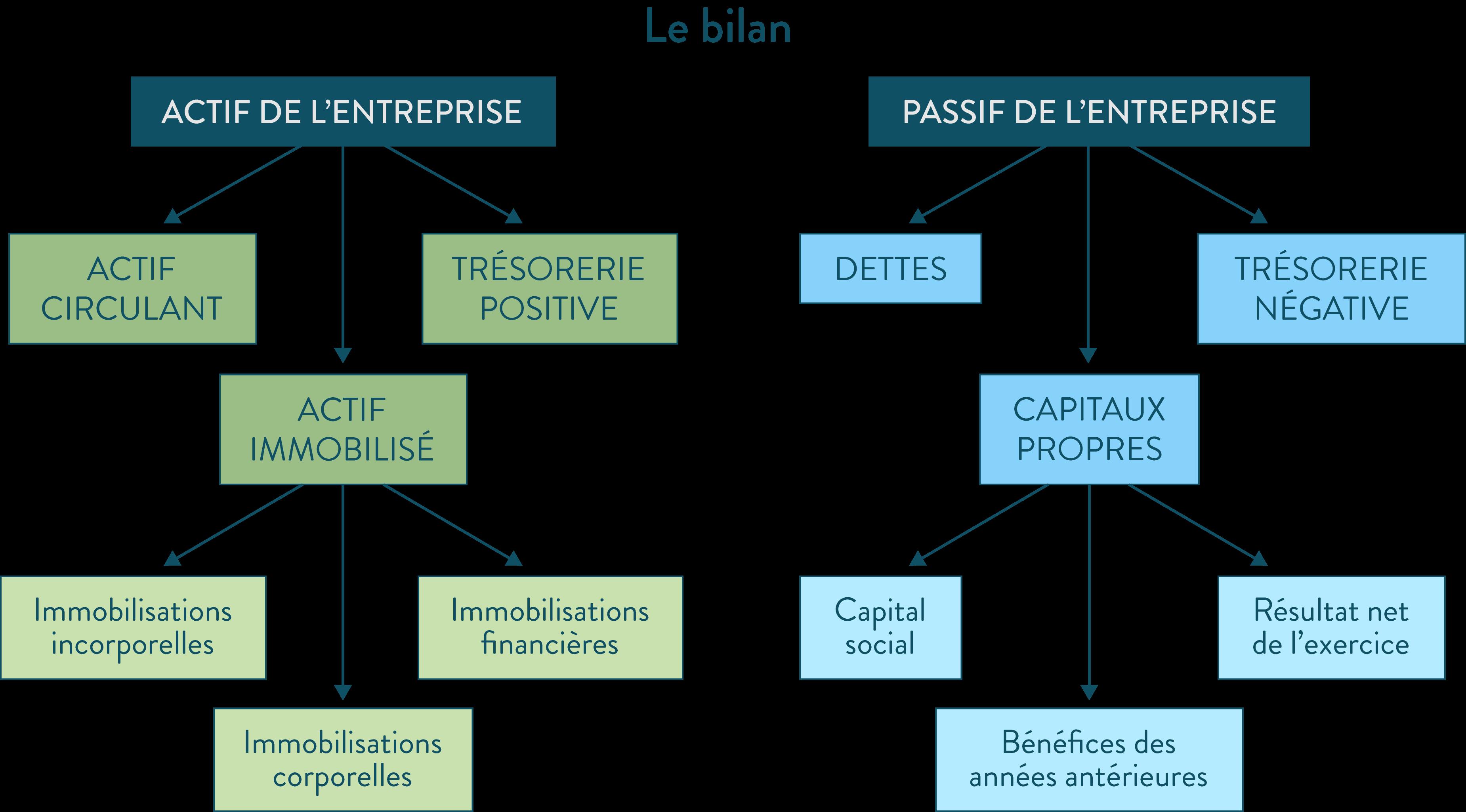 ses première le bilan entreprise immobilisations actif passif bénéfices dettes