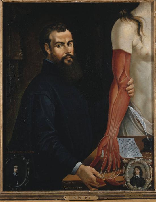 Alt André Vésale