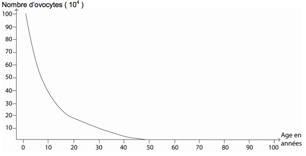 Quantité d'ovocytes en fonction de l'âge chez la femme