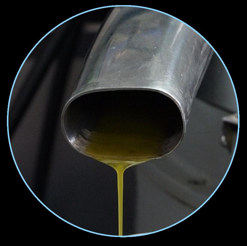 Pression à froid de l'huile d'olive 2nde