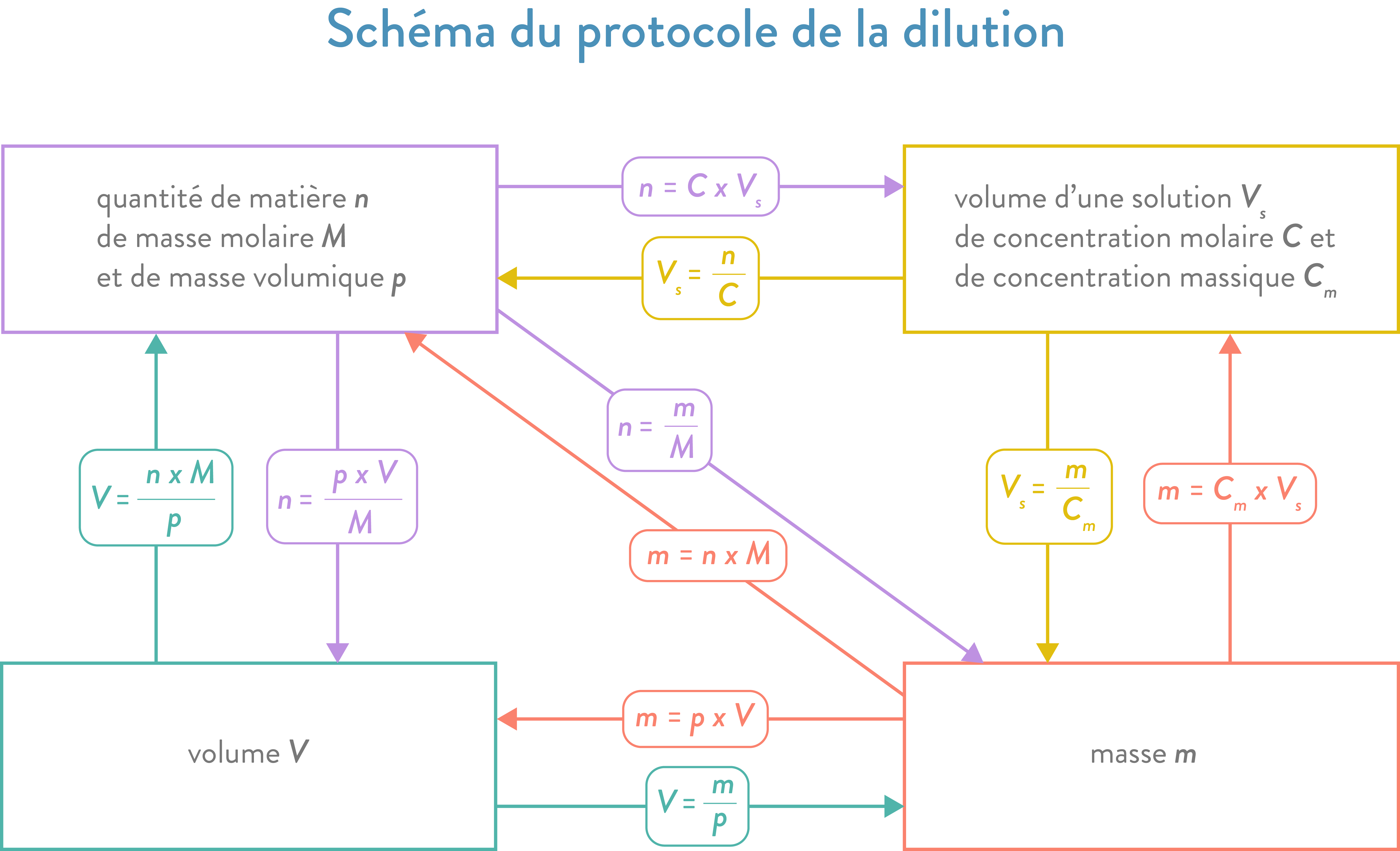 how to draw a dilution scheme