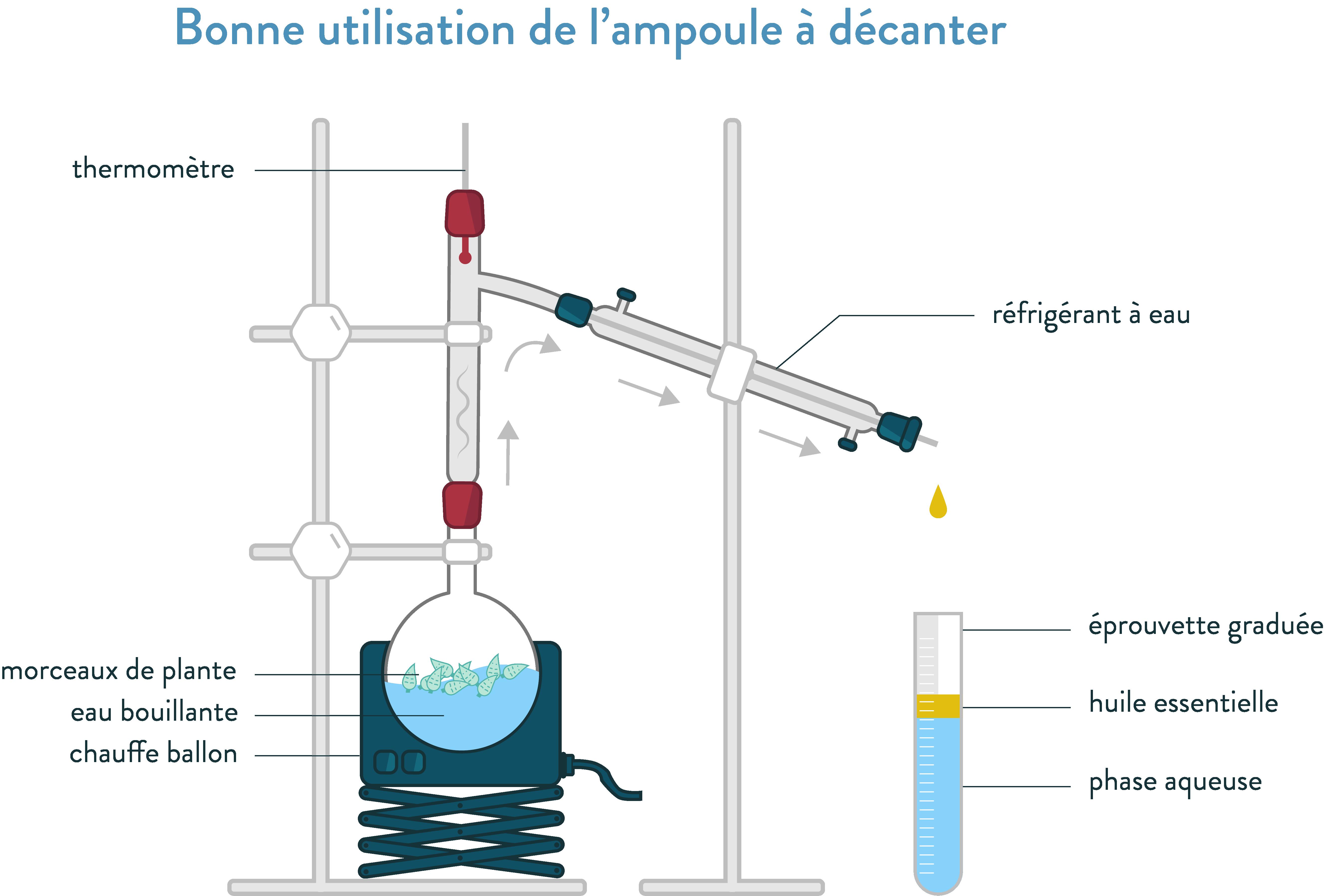 Montage de l'hydrodistillation seconde physique-chimie