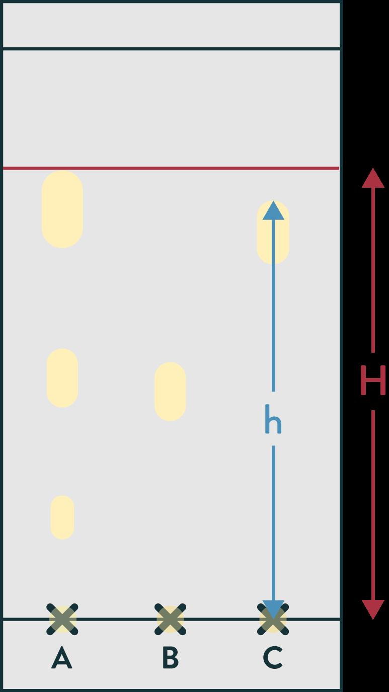 Analyse du chromatogramme de la lavande 2nde physique-chimie