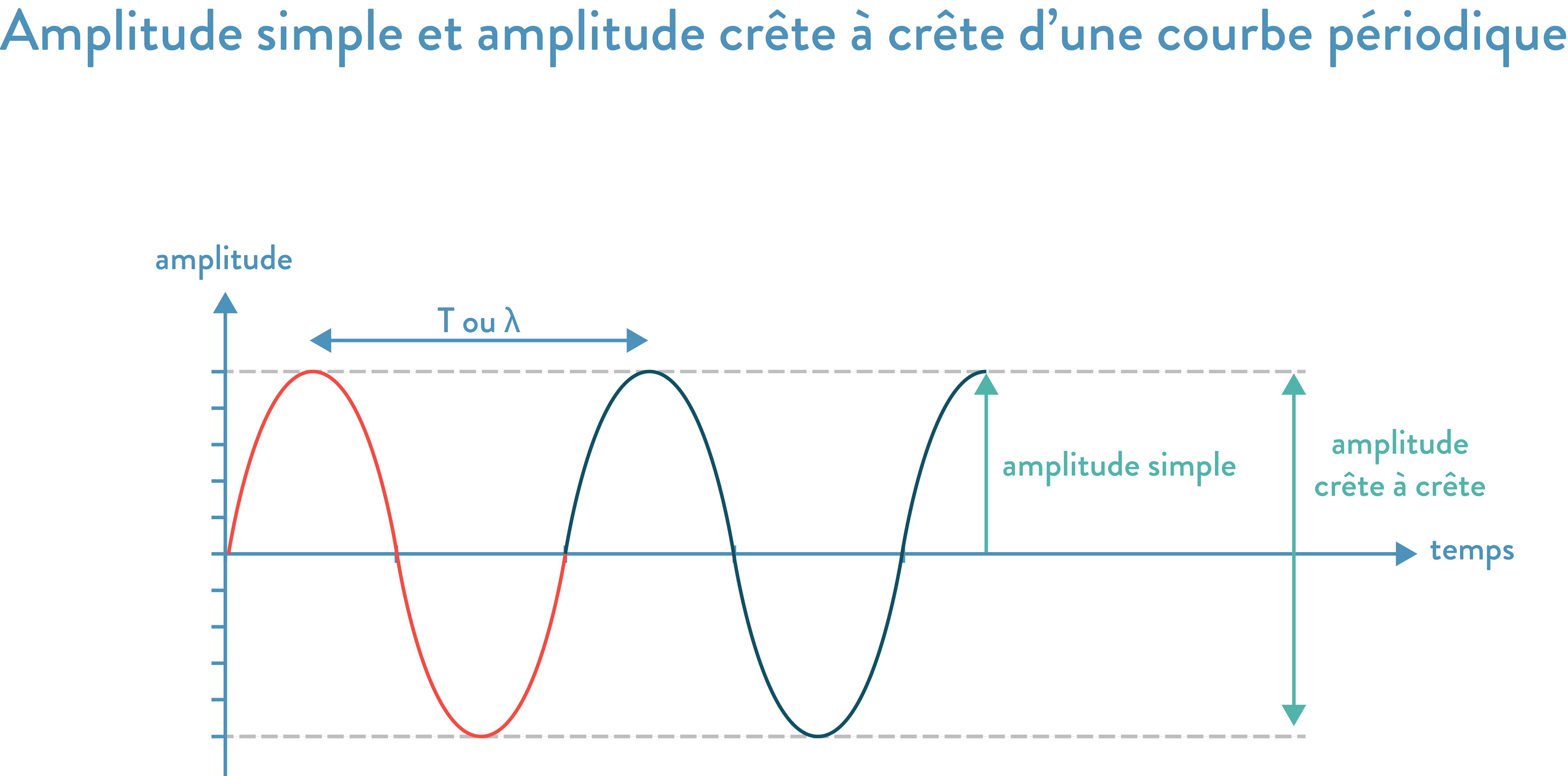 Amplitude simple et amplitude crête à crête d'une courbe périodique 2nde