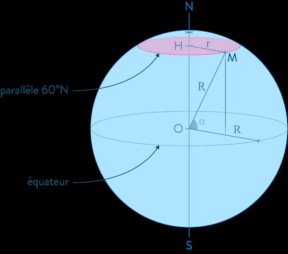 Section d'une sphère par un plan mathématiques troisième
