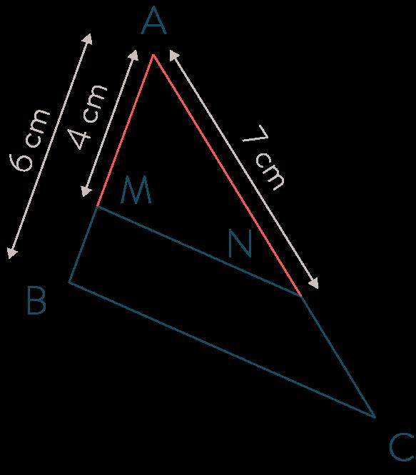 triangle géométrie théorème de Thalès mathématiques troisième