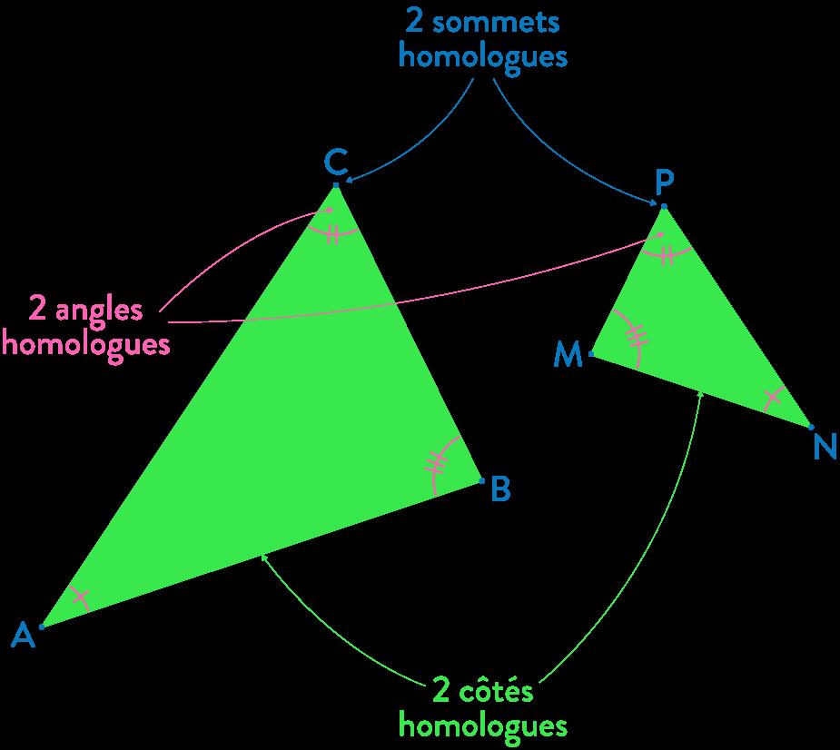 triangles semblables mathématiques troisième