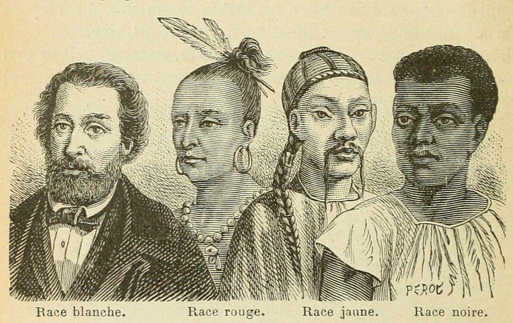 Alt Illustration de la différence entre les «races» au XIX<sup>e</sup> siècle,1877