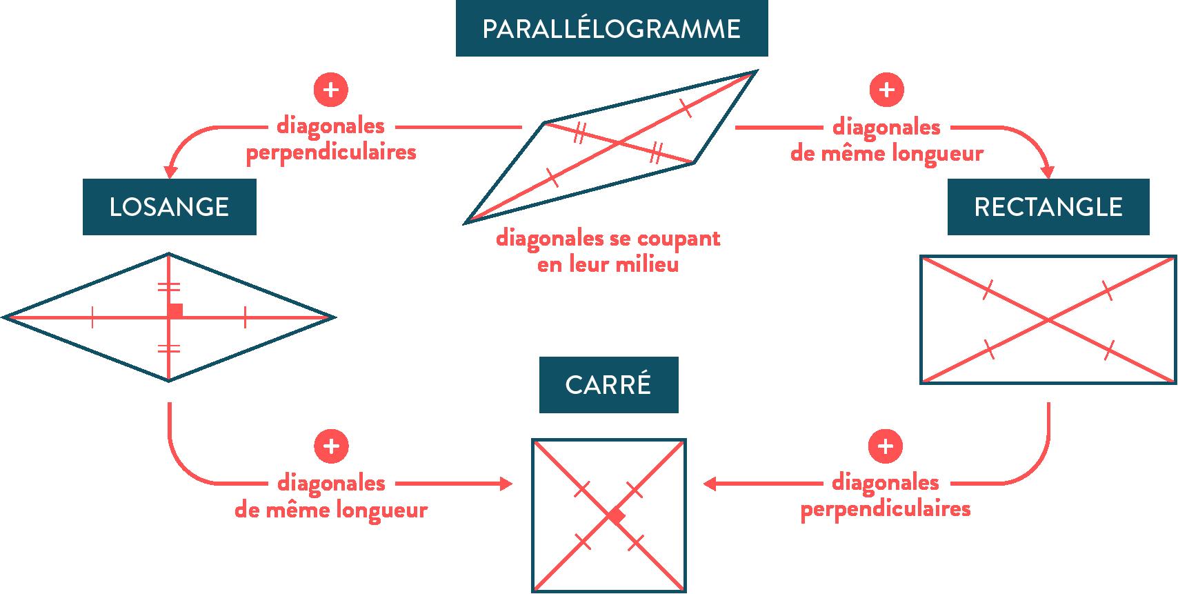 Bilan parallélogramme, losange, rectangle, carré