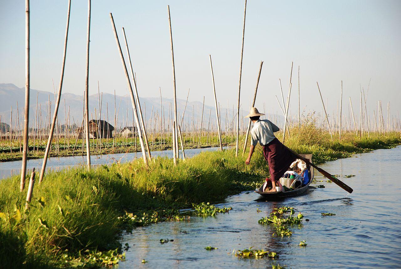 Un homme dans un jardin flottant au lacInle, en Birmanie ©Thomas Schoch