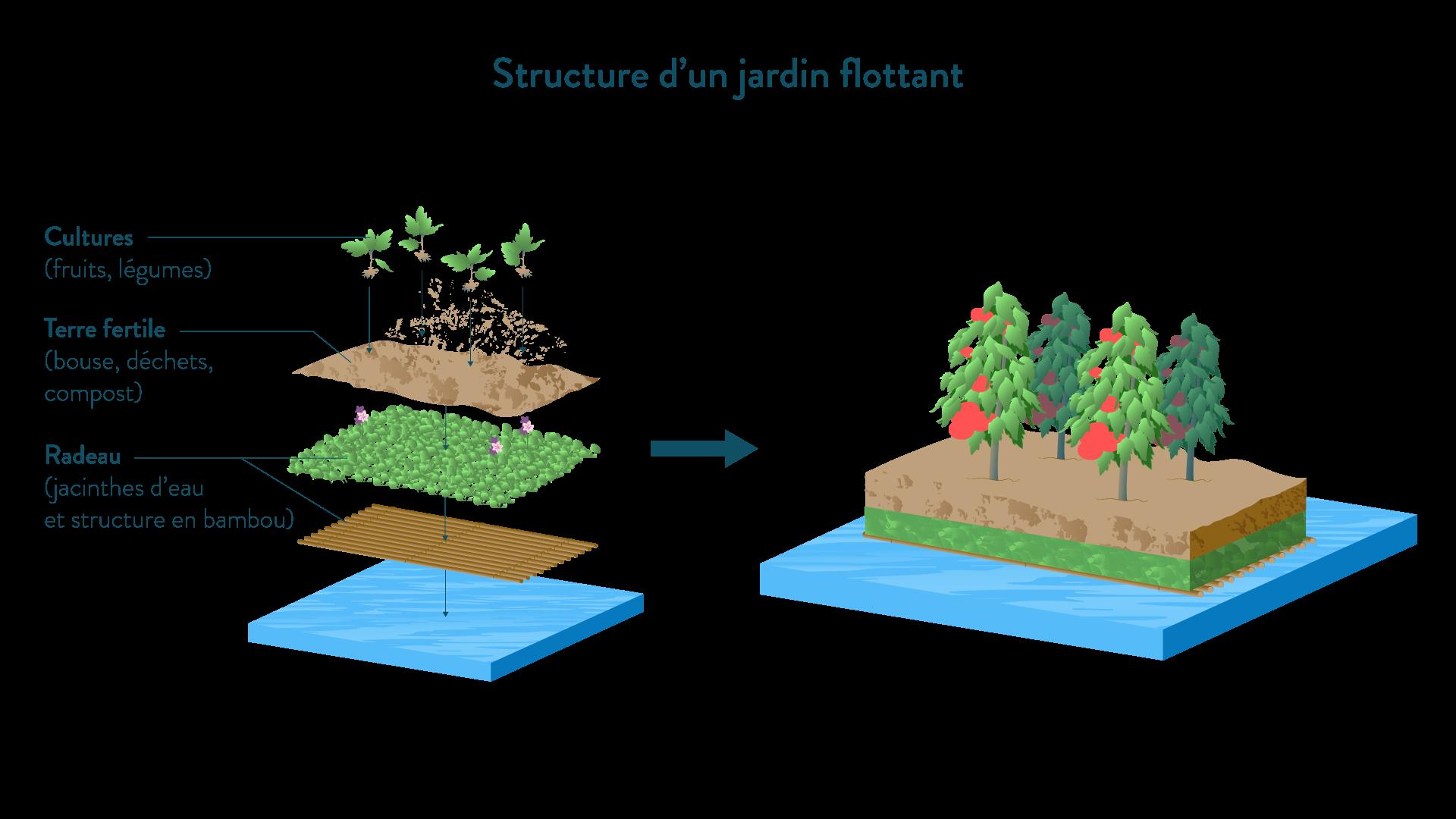 Structure d'un jardin flottant géographie cinquième