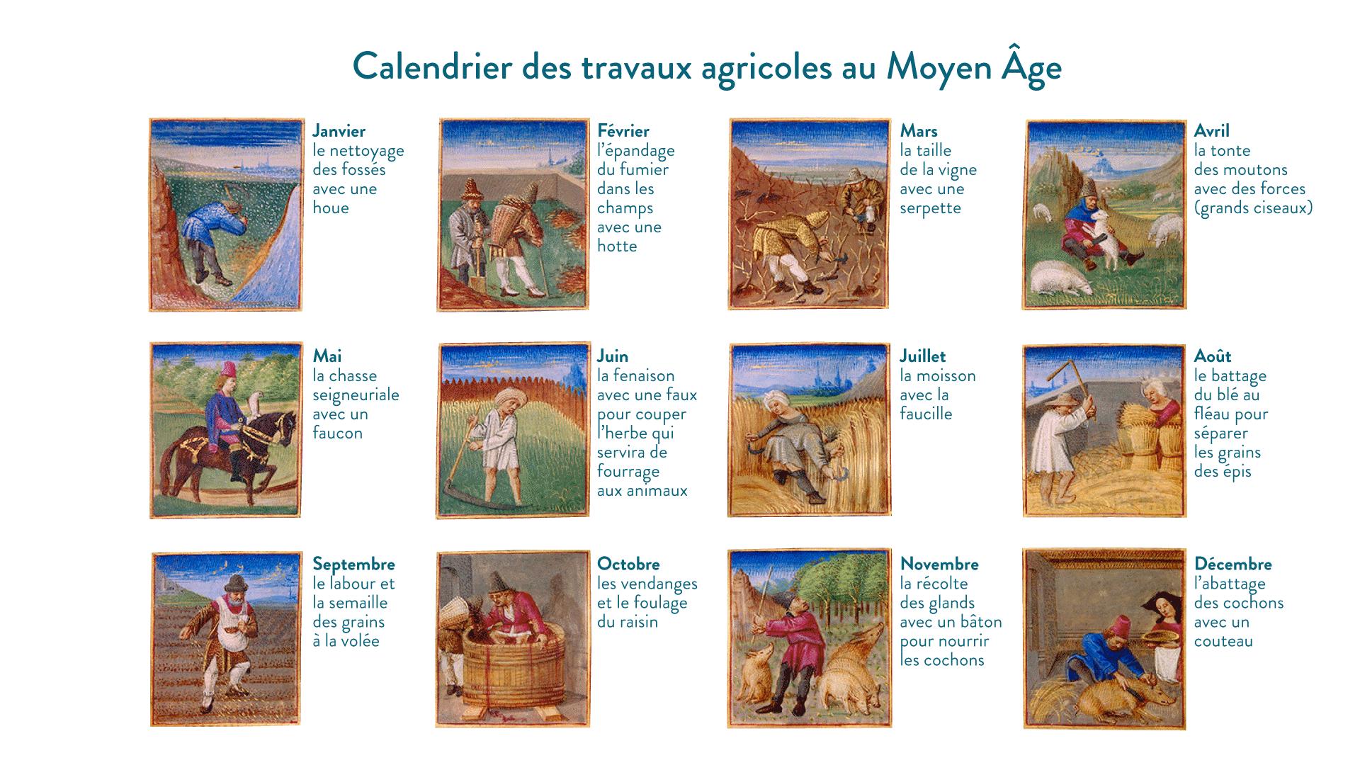 Calendrier des travaux agricoles, extraits du <em>Rustican</em> de Pietro Crescenzi, XV<sup>e</sup>siècle, musée Condé, Chantilly - 5e - histoire