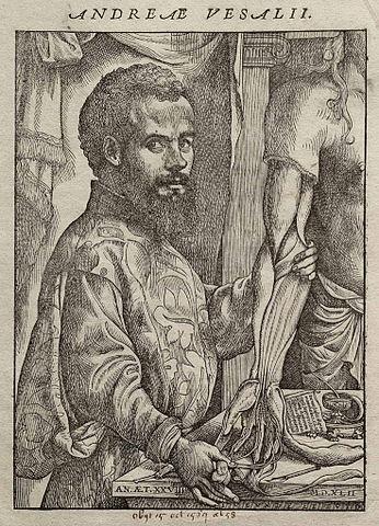 Portrait d'André Vésale extrait de son ouvrage De humani corporis fabrica_ 1543