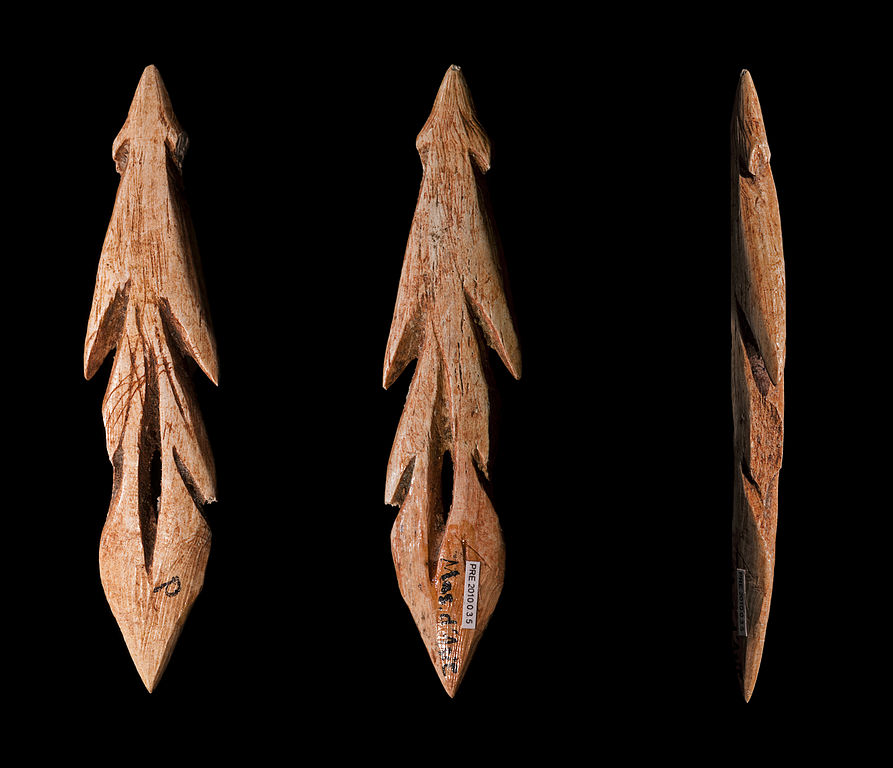 Muséum de Toulouse, France ©Didier Descouens