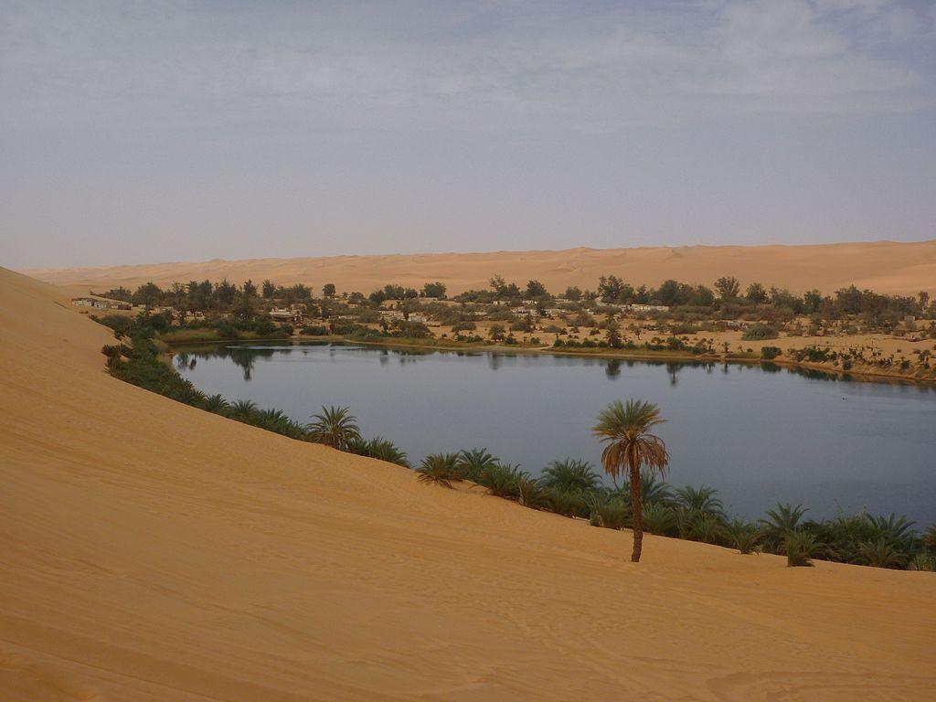 Une oasis dans le désert du Sahara, en Libye ©Franzfoto – novembre 2010