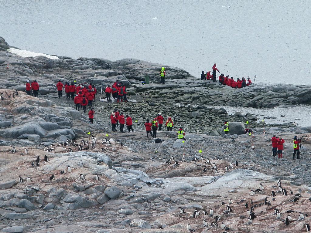 Des touristes en Antarctique ©Butterfly voyages