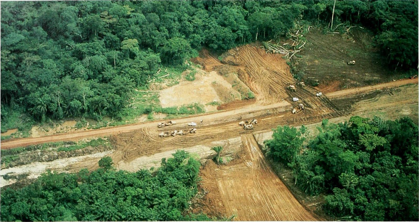 La déforestation dans le bassin du Congo
