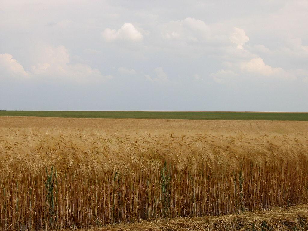 primaire ce2 questionner le monde identifier des paysages campagne