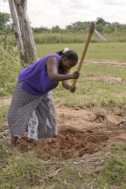 Une paysanne bêchant la terre, en Zambie ©Amanita Phalloides