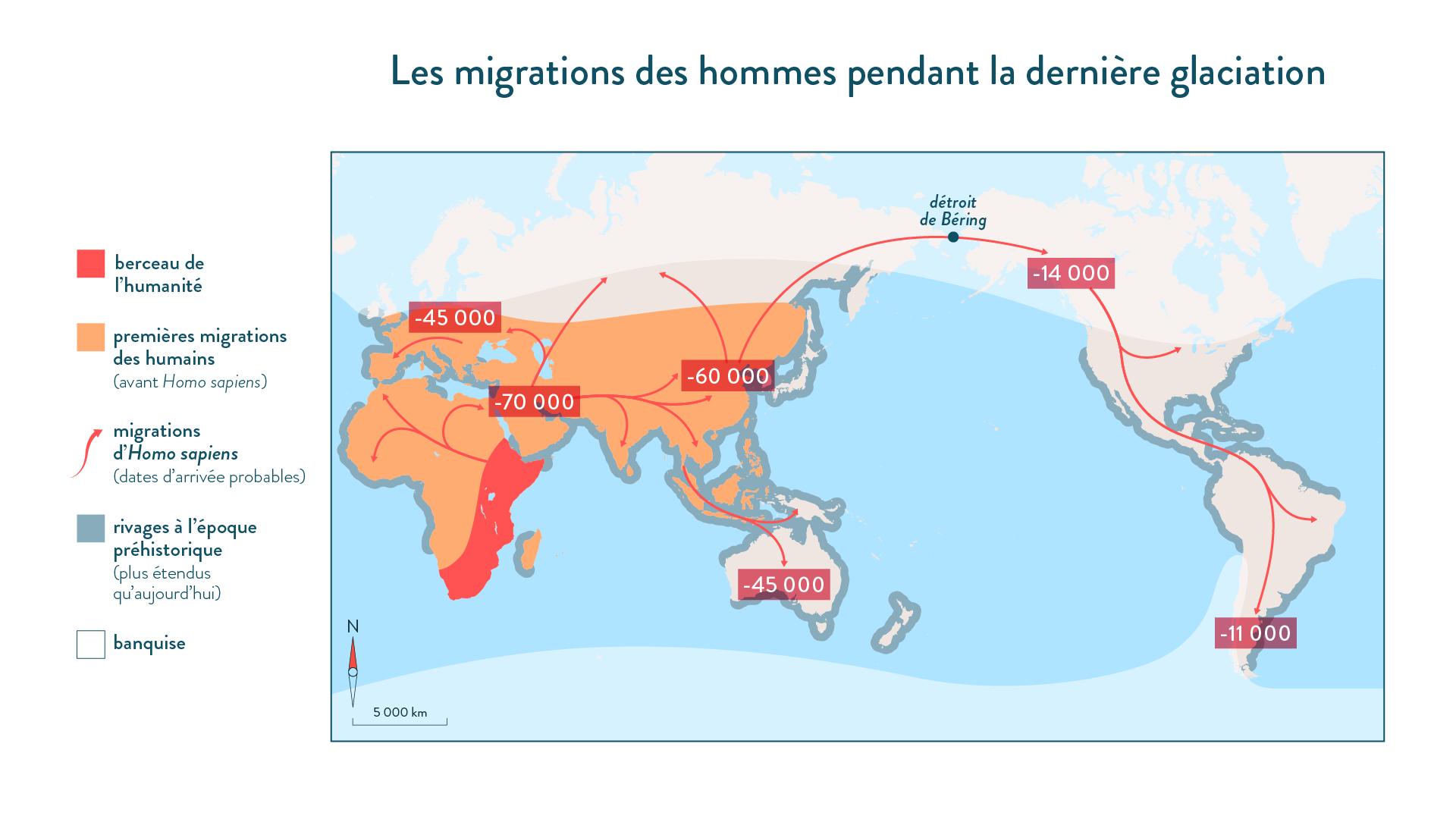 Les migrations des hommes pendant la dernière glaciation-6e-Histoire