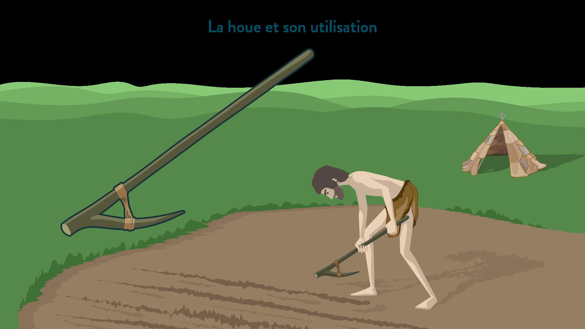 La houe et son utilisation-6e-Histoire