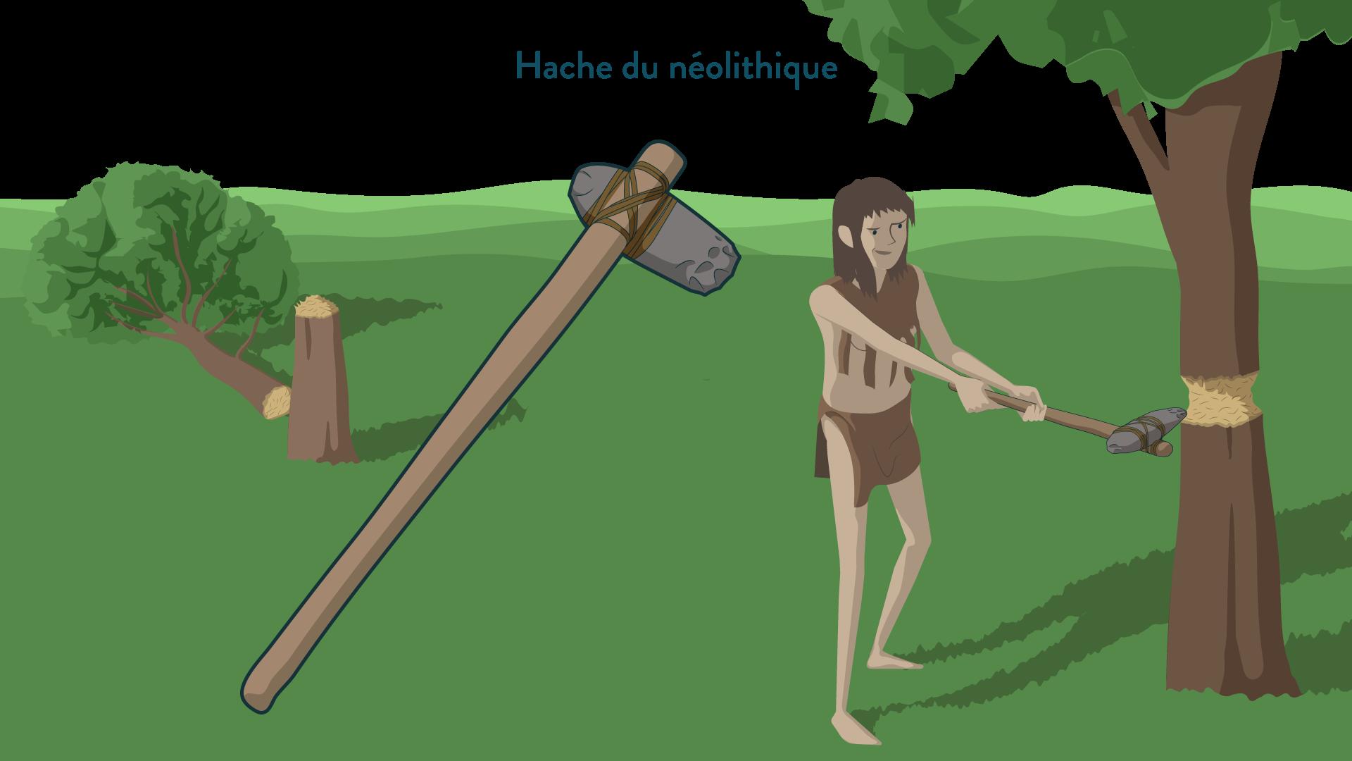 Hache du néolithique-6e-Histoire