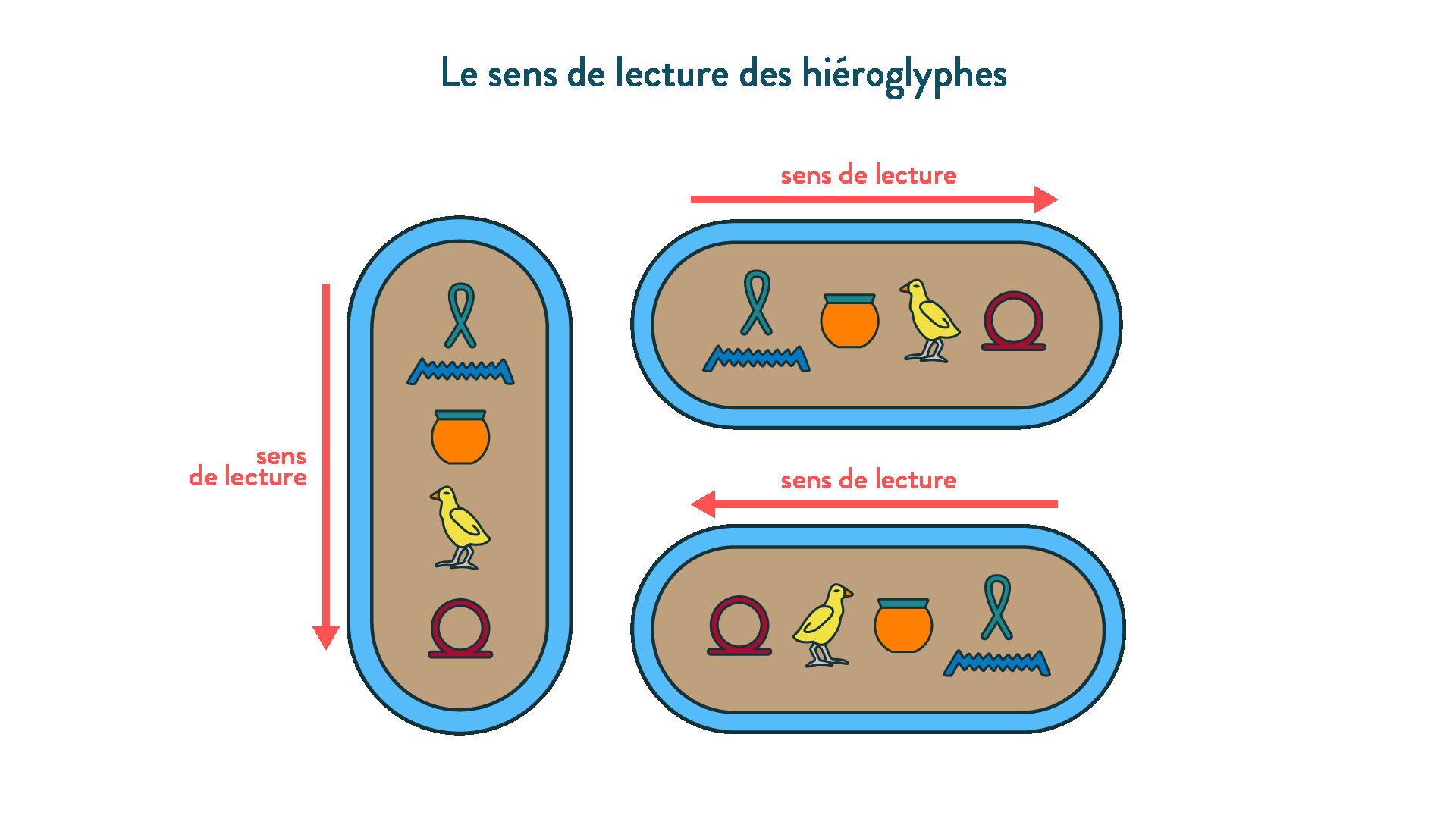Le sens de lecture des hiéroglyphes-6e-Histoire