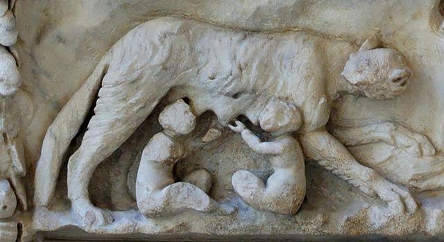 La louve allaite Romulus et Rémus, Musée de Rome-6e-histoire