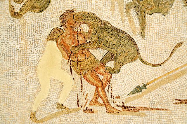 Les supplices infligés aux chrétiens&nbsp;: un condamné livré aux bêtes. Mosaïque du II<sup>e</sup>&nbsp;siècle, Musée archéologique d'El Djem (Tunisie). ©Dennis Jarvis-histoire-6e