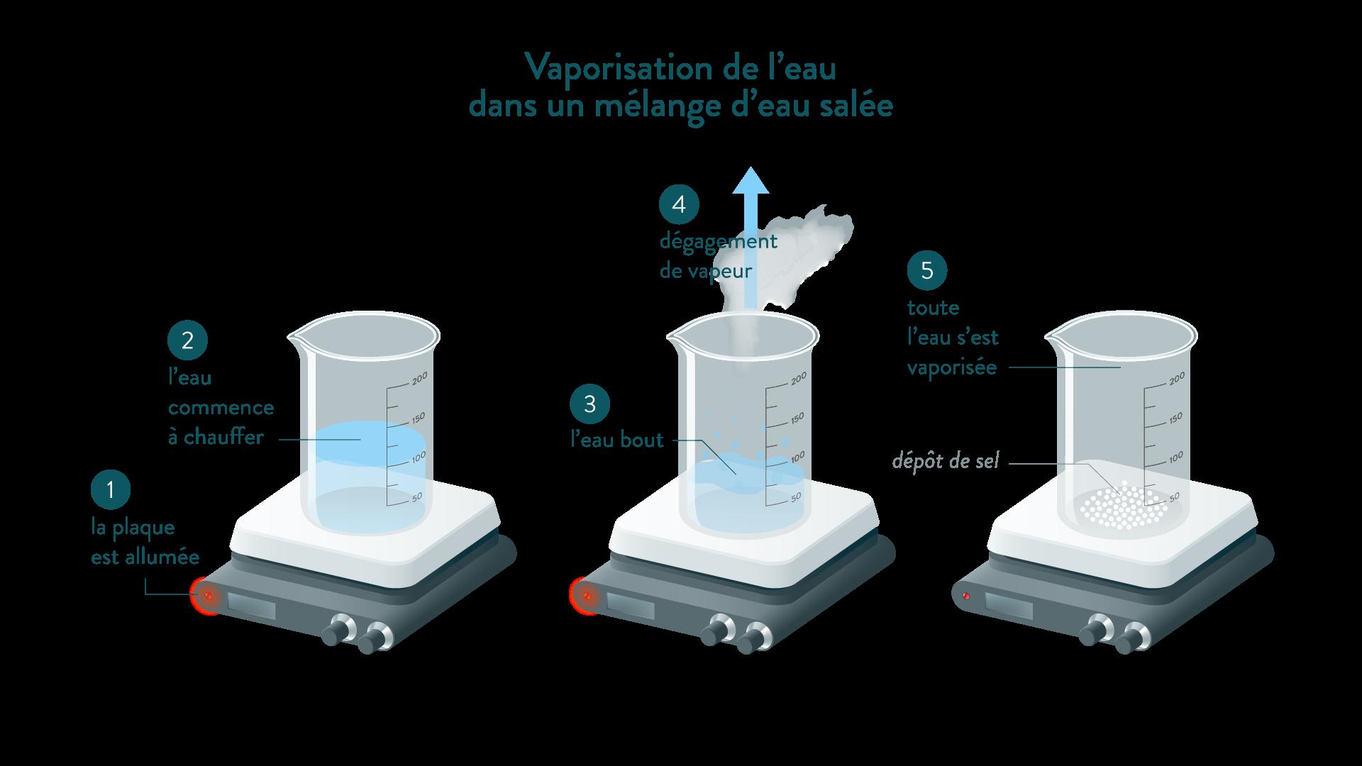 Vaporisation de l'eau dans un mélange d'eau salée physique chimie 6eme schoolmouv
