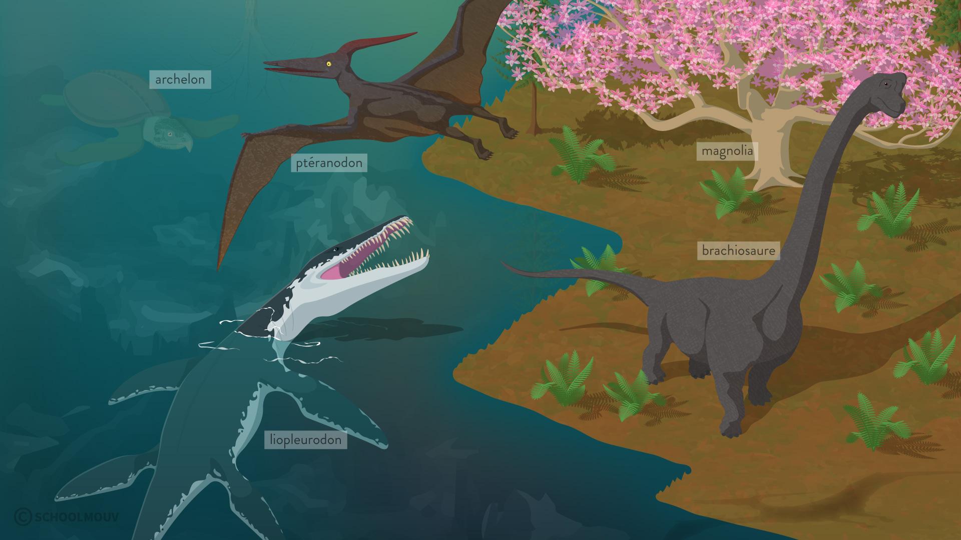 Reconstitution d'un paysage daté de 130 à 65 millions d'années (Crétacé)-svt-6eme-schoolmouv