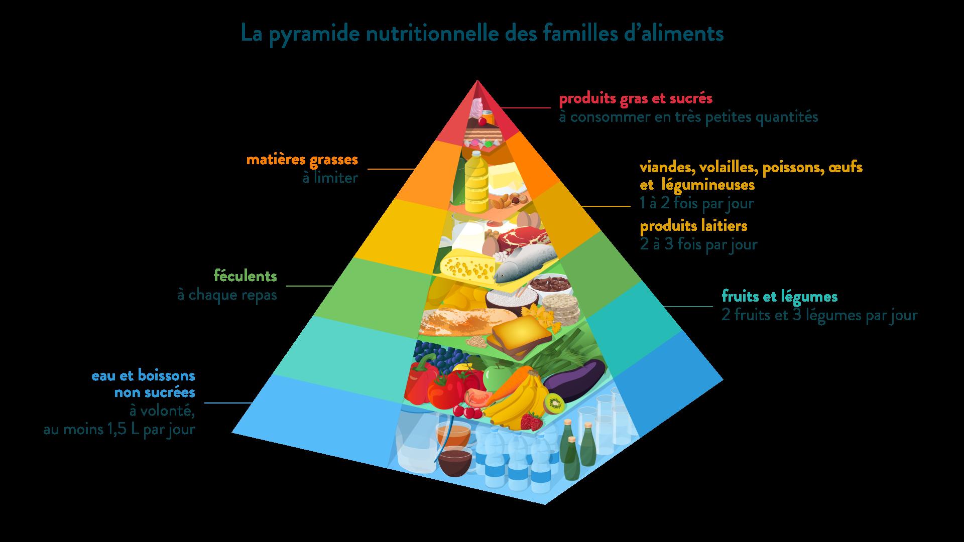 La pyramide nutritionnelle des familles d'aliments-svt-6eme-schoolmouv