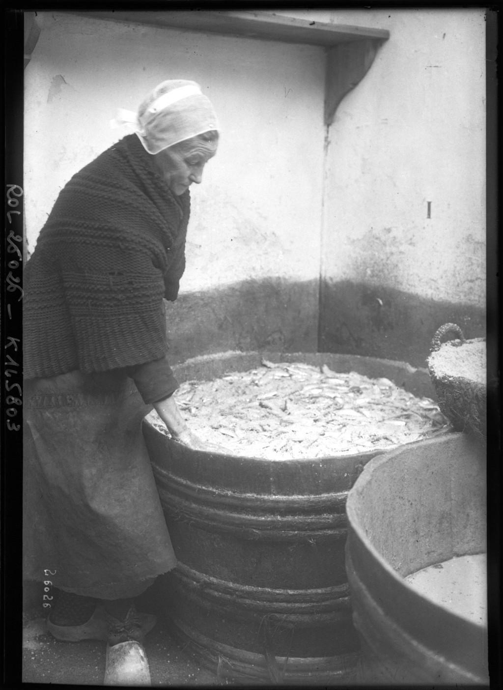 Salaison de sardines