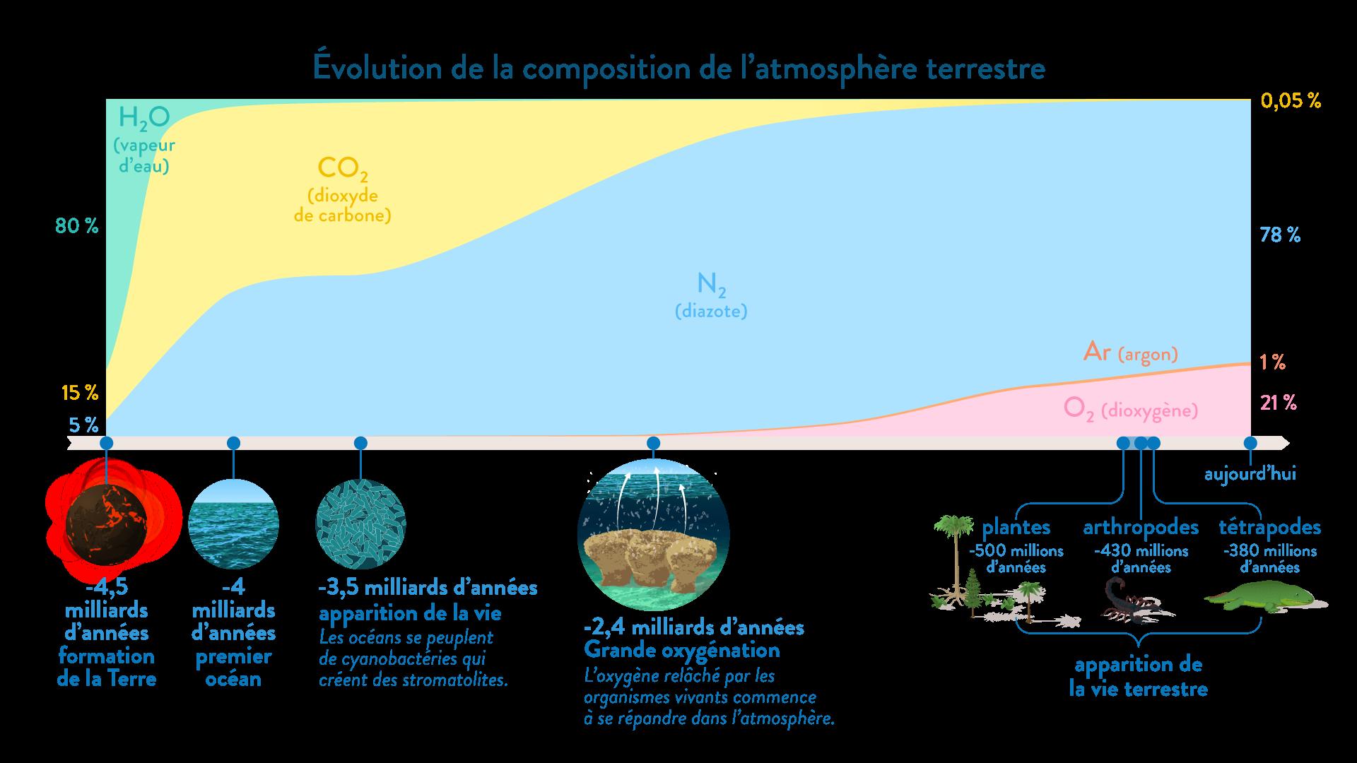 Évolution de la composition de l'atmosphère depuis la formation de la Terre et Production d'O2 par les cyanobactéries-svt-6e-schoolmouv