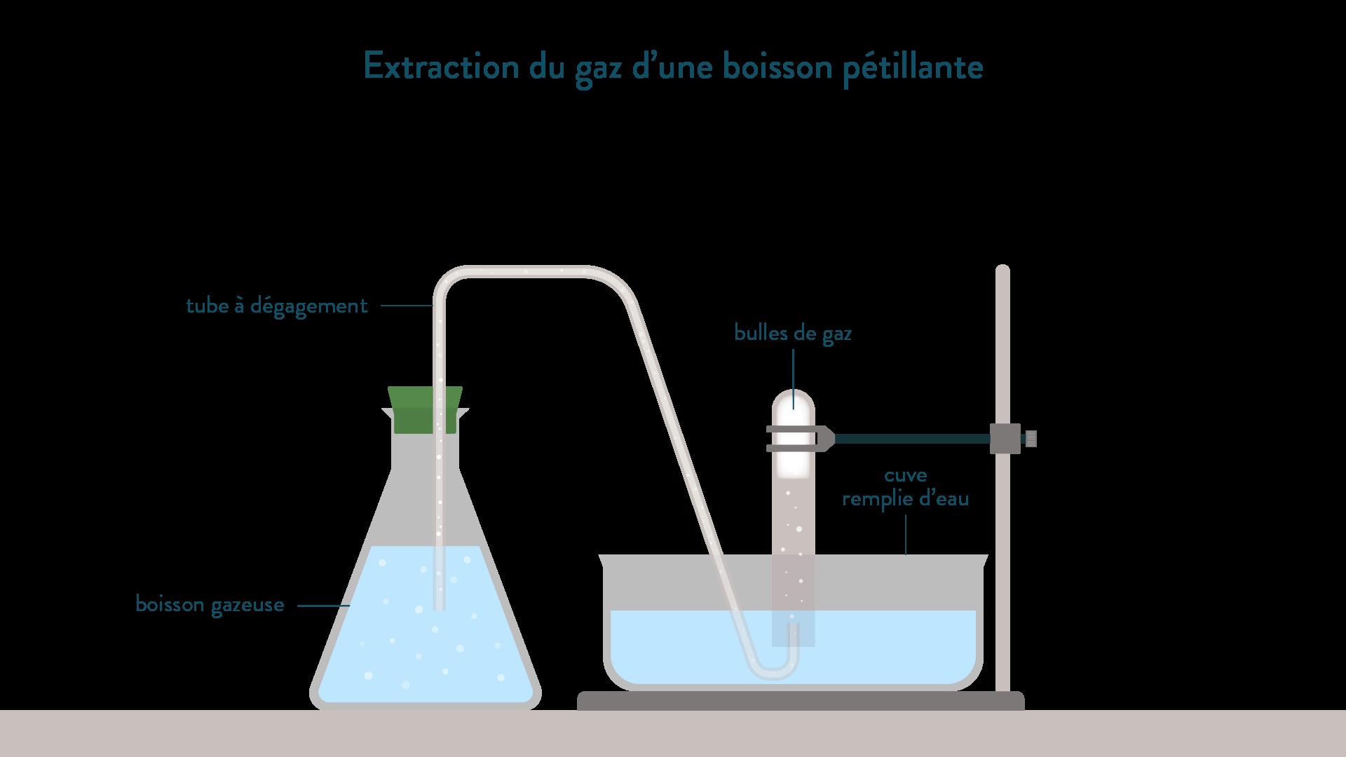 Dispositif d'extraction du gaz d'une boisson pétillante-mélange liquide gaz-physique-chimie-schoolmouv