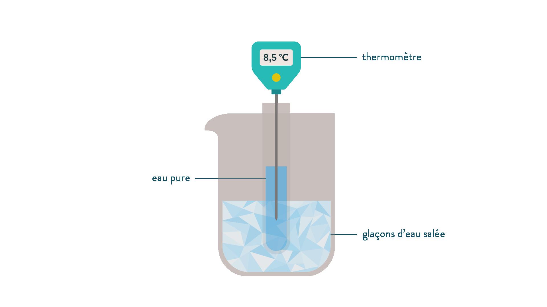 Dispositif expérimental eau + réfrigirant + thermomètre