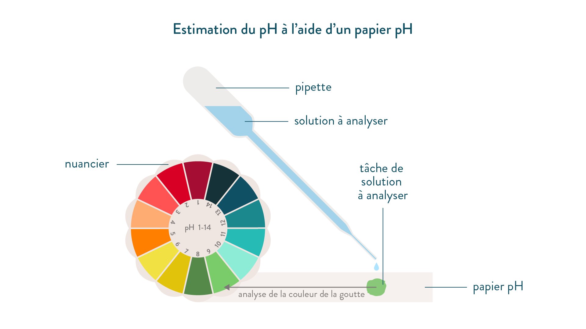 Estimation du pH à l'aide d'un papier pH