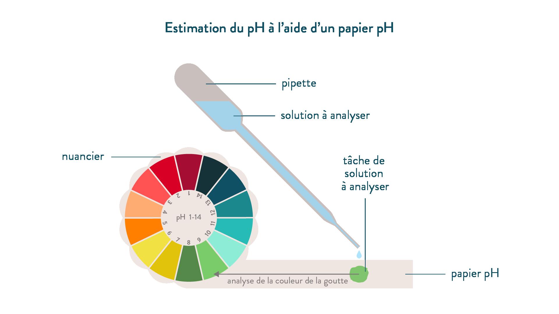 Schoolmouv cours en ligne pour le coll ge et le lyc e schoolmouv - Comment mesurer le ph ...