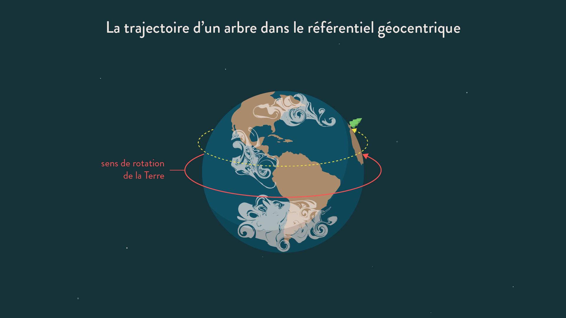 La trajectoire d'un arbre dans le référentiel géocentrique