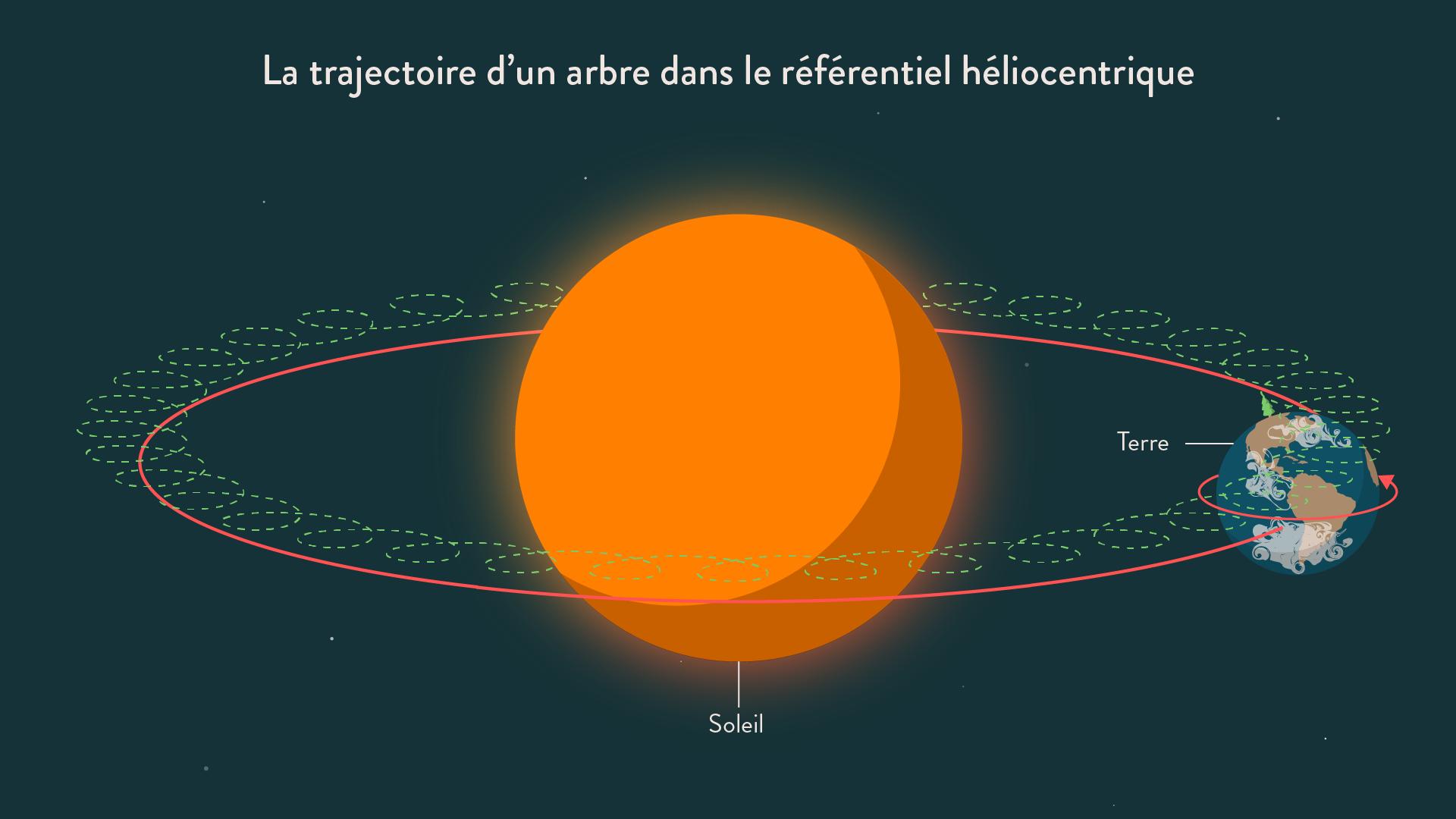 La trajectoire d'un arbre dans le référentiel héliocentrique