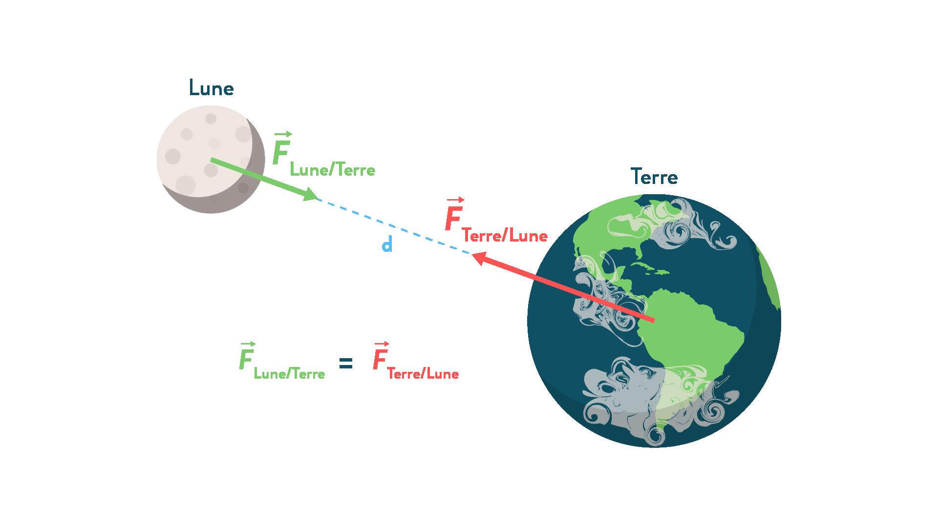 forces d'attraction gravitationnelles exercées mutuellement par la Terre et la Lune
