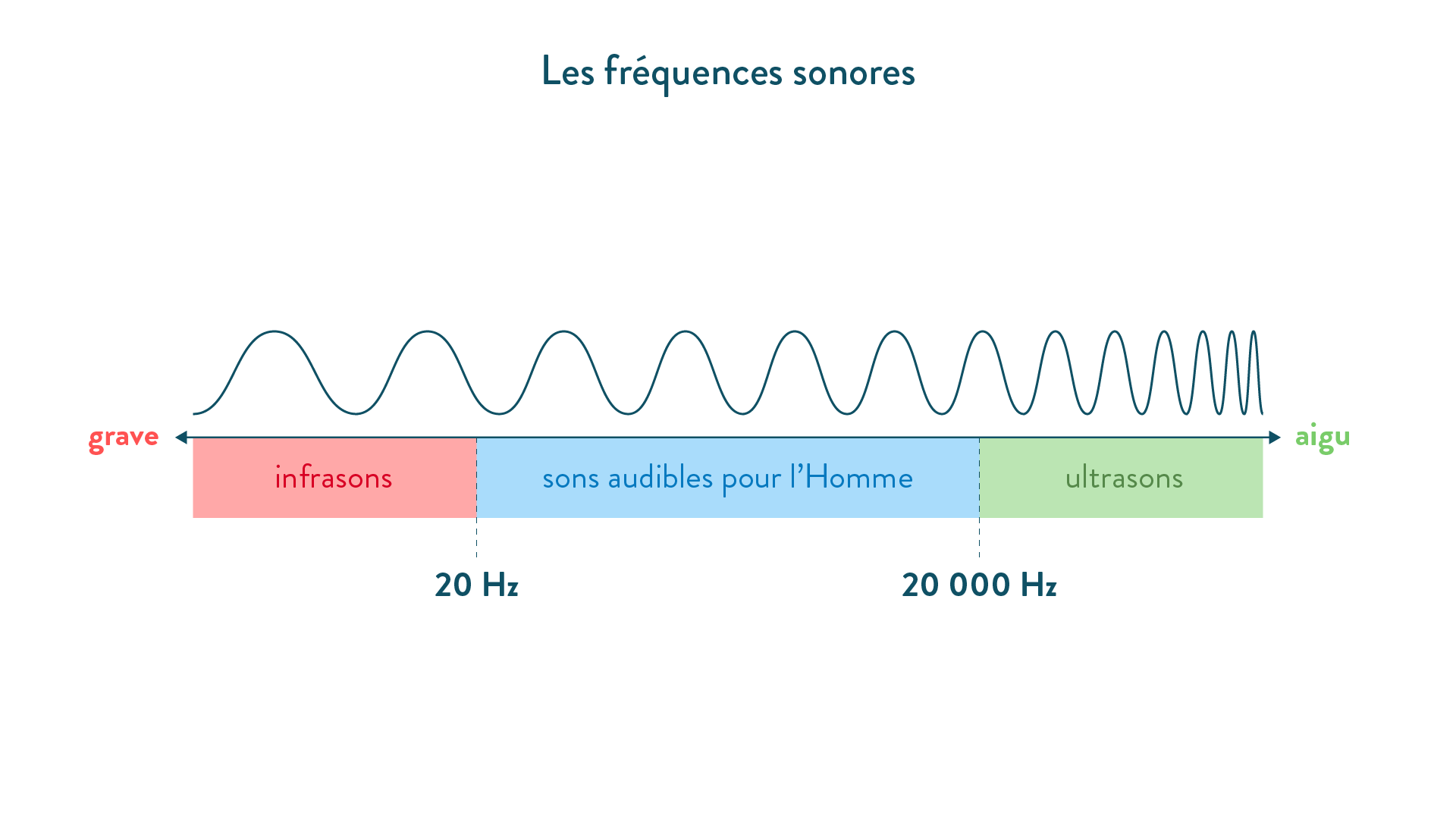 Les fréquences sonores