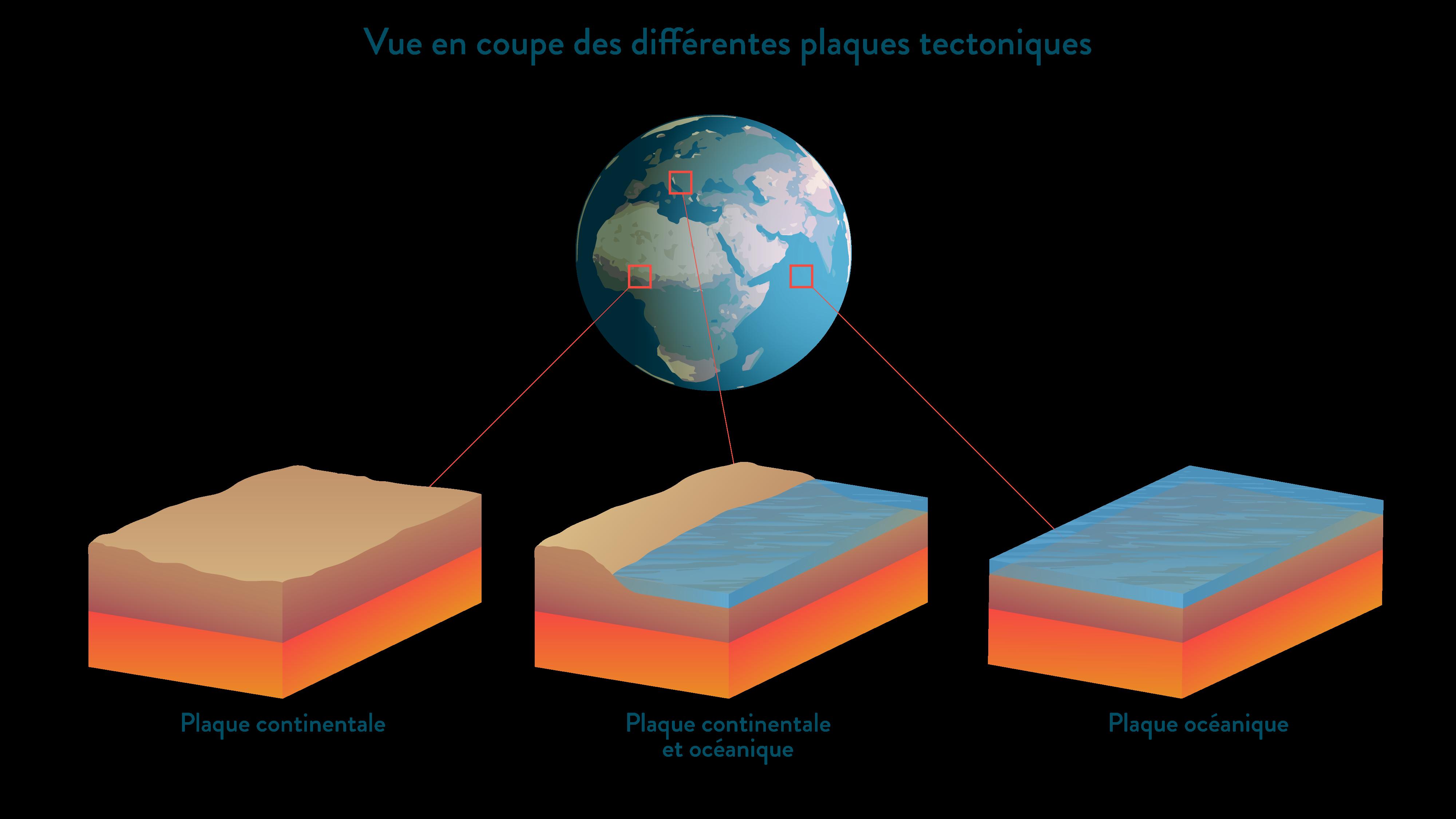 Vue en coupe des différentes plaques tectoniques