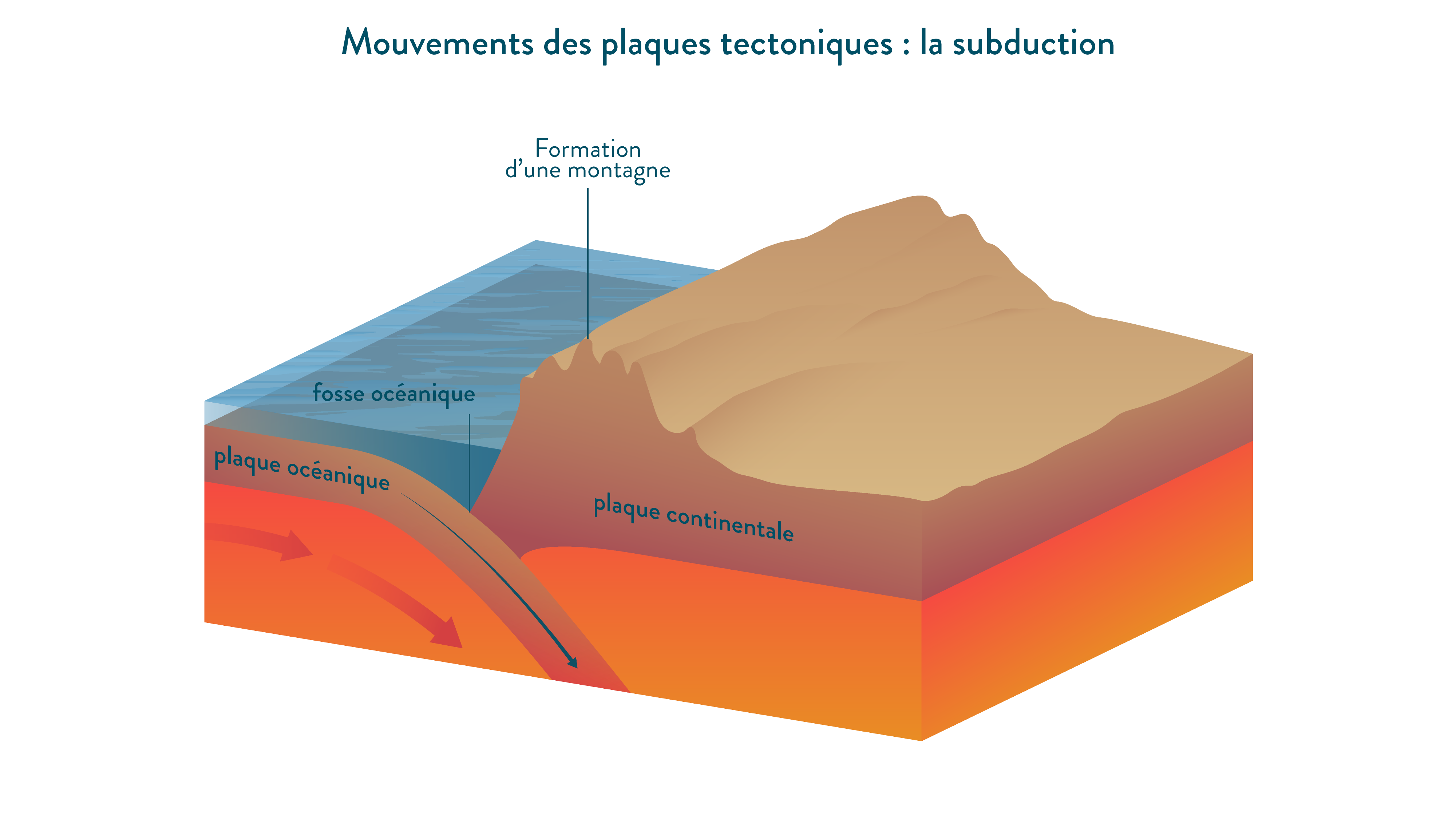 La subduction