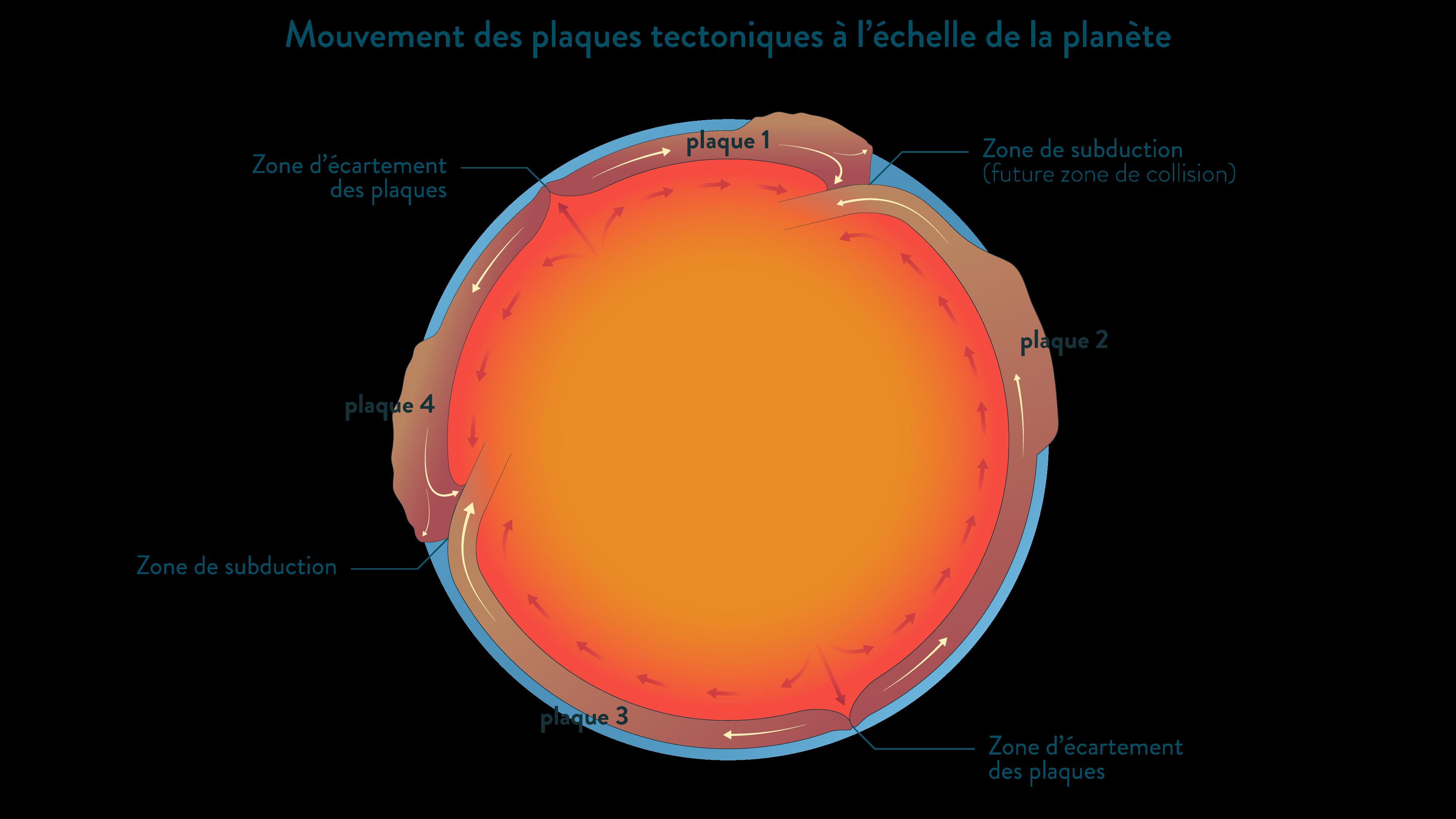 Les mouvements des plaques lithosphériques à l'échelle de la planète vue en coupe