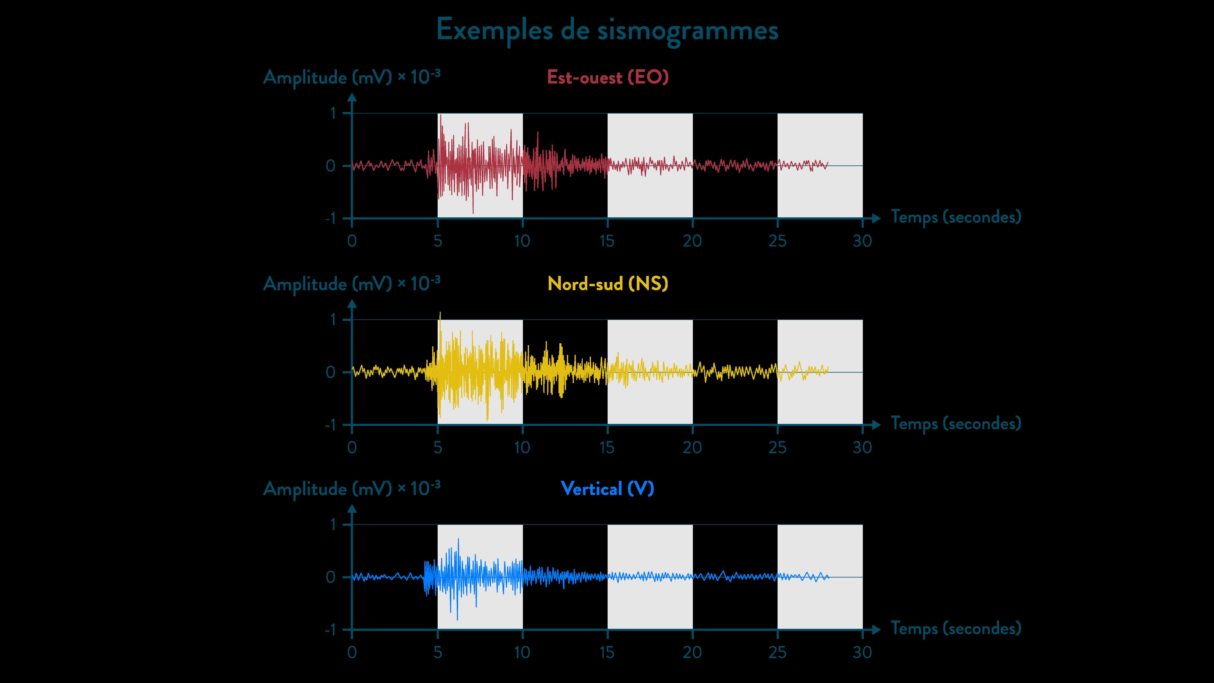 Exemples de sismogrammes