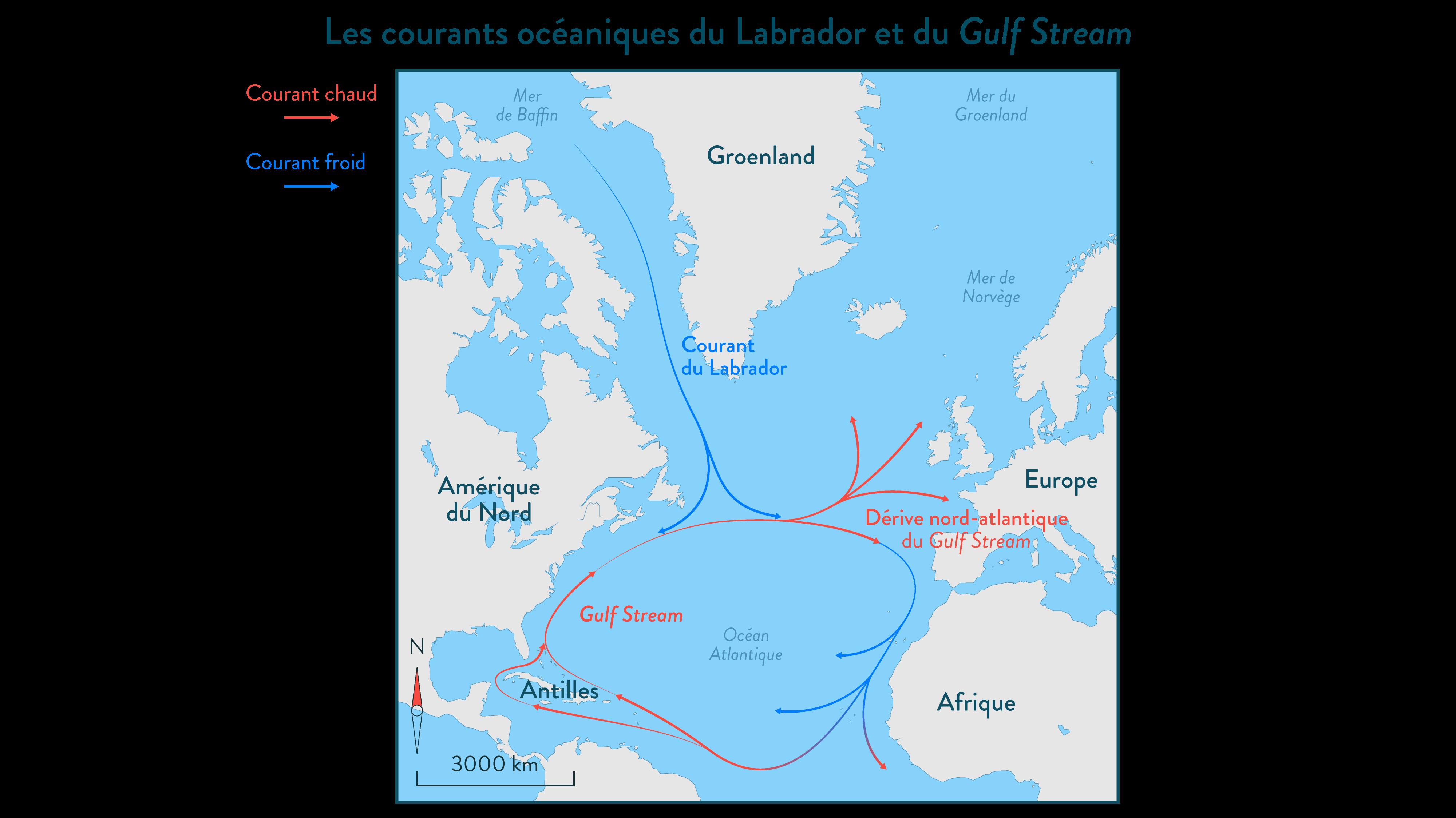 Les courants océaniques du Labrador et du Gulf Stream