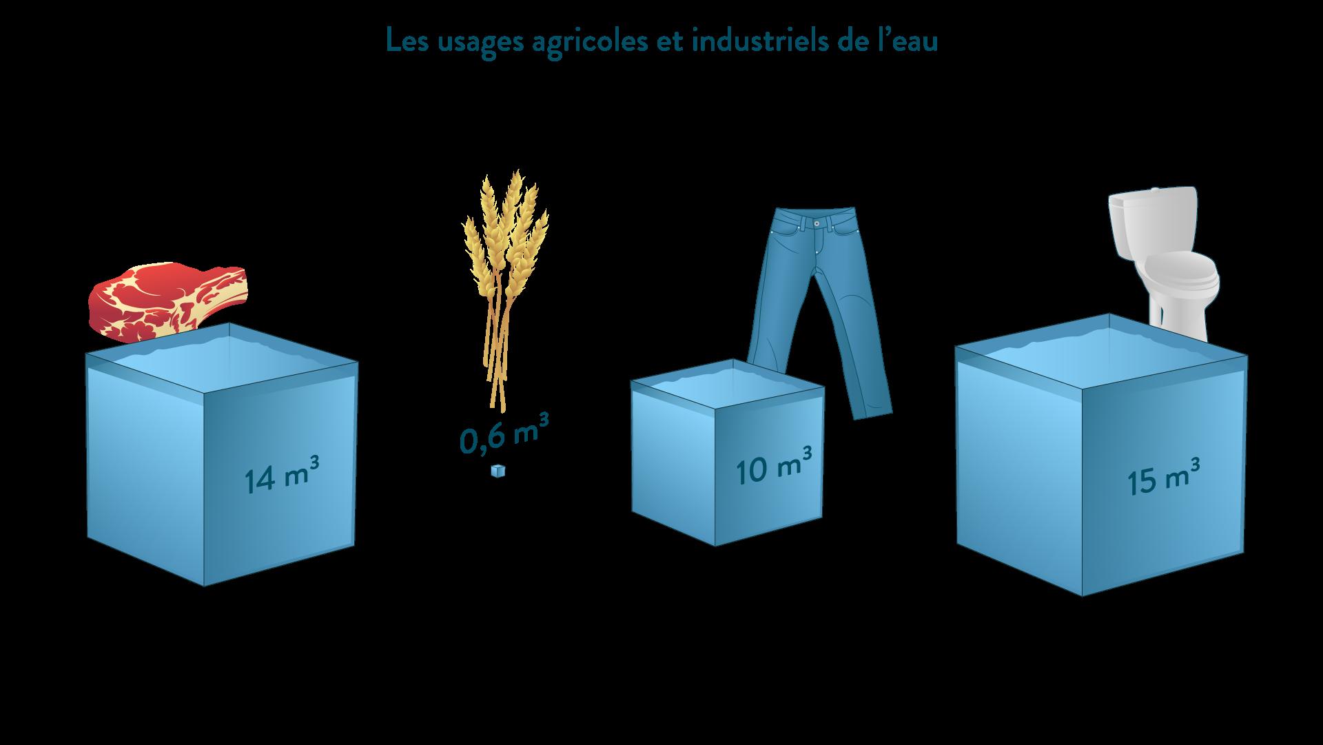Les usages agricoles et industriels de l'eau