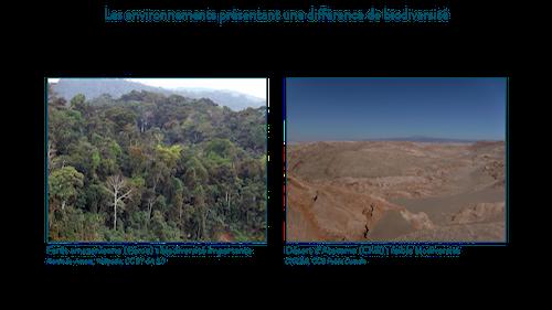 Exemple d'environnements présentant une différence de biodiversité.