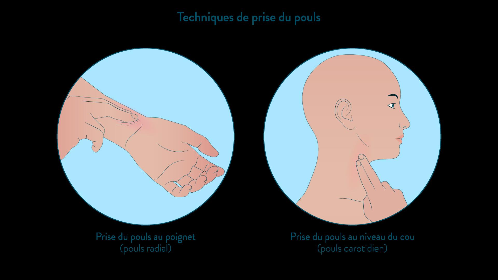 Techniques de prise du pouls